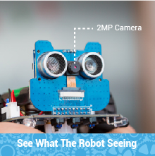See what the robot sees